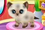 mobilne igrice Paws to Beauty 3: Puppies and Kittens Edition