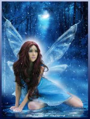 Fairy13