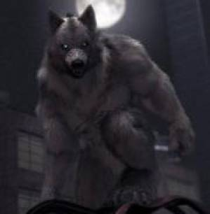 Maxim Wolf