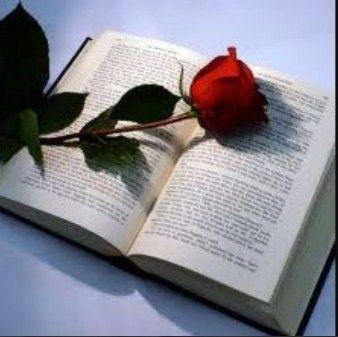neodoljivo, miris ruze, odlican roman i ...