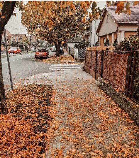 Kiša. Jesen. I moj Šabac. ❤️