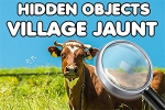 Hidden Objects: Village Jaunt
